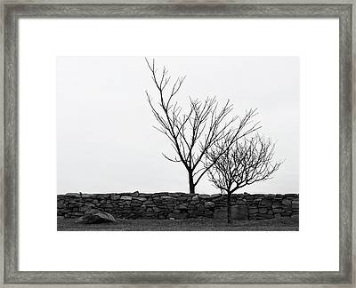 Stone Wall With Trees In Winter Framed Print by Nancy De Flon