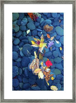 Stones0928 Framed Print by Carolyn Stagger Cokley