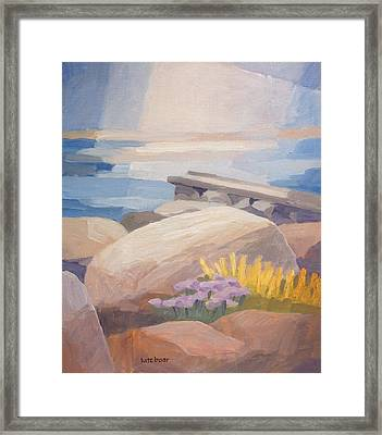 Stony Coast Framed Print by Lutz Baar