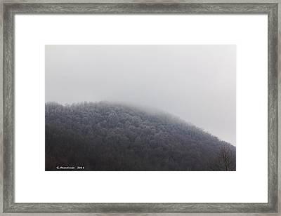 Stormy Day Framed Print by Carolyn Postelwait