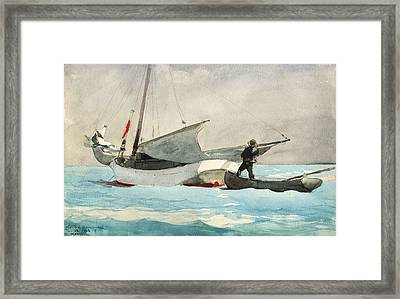 Stowing Sail Framed Print
