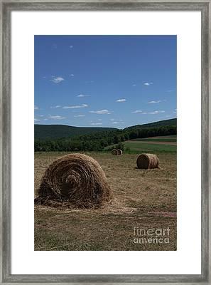 Straw Bales Framed Print