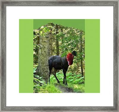 Strawberry Moose Head Framed Print by Lj White