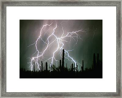 Striking Photography Framed Print