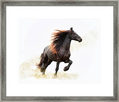 Strut Framed Print by Ron  McGinnis