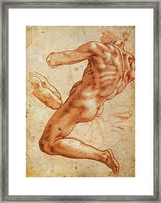 Study For An Ignudo Framed Print by Michelangelo Buonarroti
