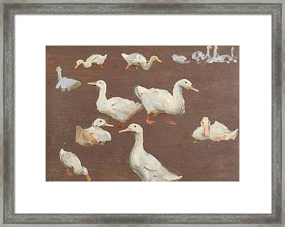 Study Of Ducks Framed Print by Alexander Mann