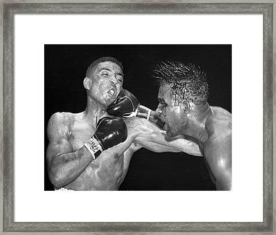 Sugar Ray Throws A  Right Framed Print