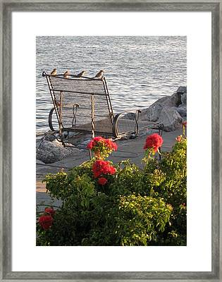 Summer Day Framed Print by John Scates