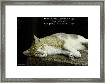 Summer Days Framed Print by Michael Taggart II