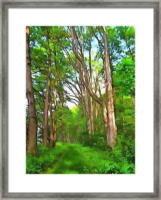 Summer Escape Framed Print by Dan Sproul