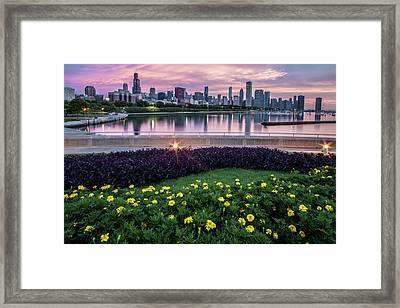 summer flowers and Chicago skyline Framed Print