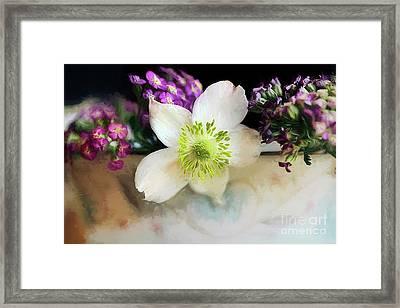 Summer Fragrance Framed Print by Darren Fisher