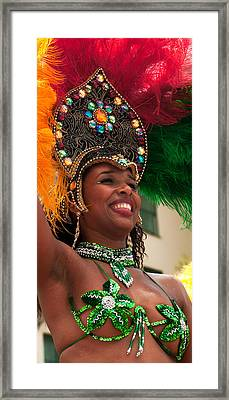 Summer Solstice Parade Santa Barbara  2010 Framed Print