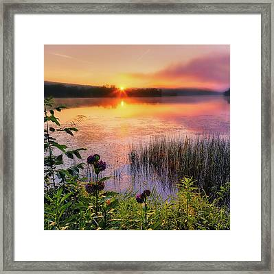 Framed Print featuring the photograph Summer Sunrise Square by Bill Wakeley