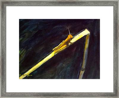 Sun Bather Framed Print by Victor Griffith