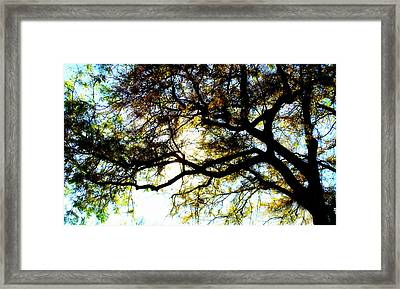 Sunday Afternoon Framed Print