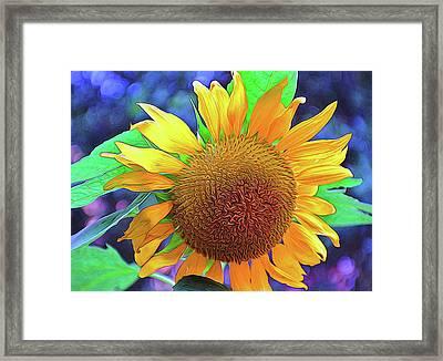 Framed Print featuring the photograph Sunflower by Allen Beatty
