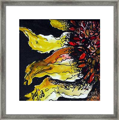 Sunflower Framed Print by Amy Williams