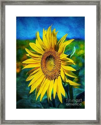 Framed Print featuring the digital art Sunflower by Ian Mitchell