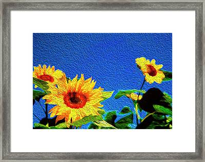 Sunflowers Abstract Framed Print by Les Cunliffe