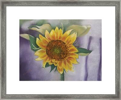 Sunflowers For Nancy Framed Print
