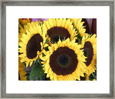 Framed Print featuring the photograph Sunflowers by Tom Romeo
