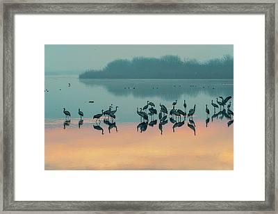 Sunrise Over The Hula Valley Framed Print
