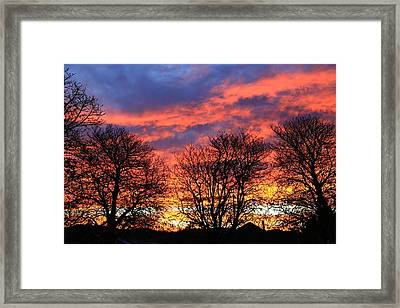 Framed Print featuring the photograph Sunset And Filigree by Nareeta Martin