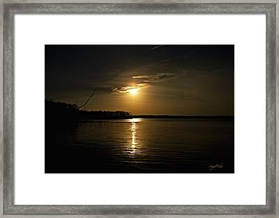 Framed Print featuring the photograph Sunset by Angel Cher