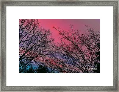 Sunset Colors Framed Print