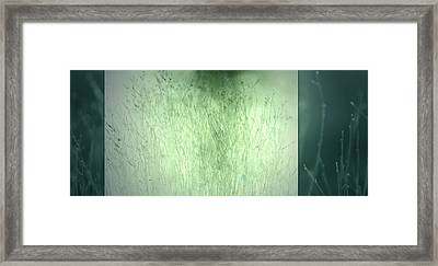 Framed Print featuring the photograph Surface by Mark Ross