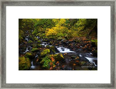 Surrounded By Autumn Framed Print by Mike Dawson