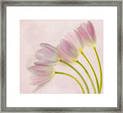 Sweep Me Off My Feet Framed Print