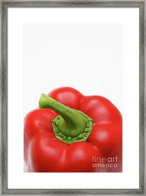 Sweet Pepper Framed Print by Gaspar Avila