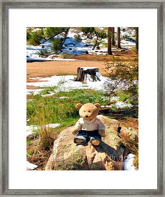 Takin' A Break Framed Print