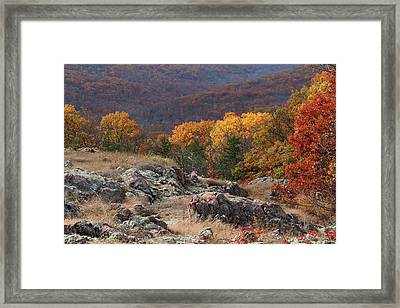 Taum Sauk Mountain Glade 2 Framed Print