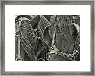 Teamwork Together Framed Print by JAMART Photography