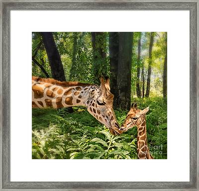Tender Are The Moments Where Love Embraces Time Framed Print