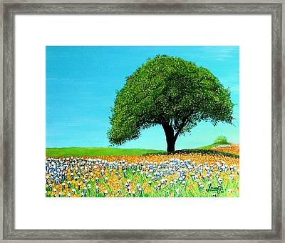 Texas Hill Country Framed Print by JoeRay Kelley