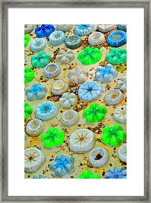 Textures. Koblenz. Framed Print by Andy Za