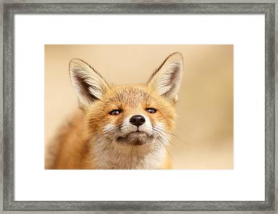 That Foxy Face Framed Print