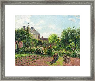 The Artist's Garden At Eragny Framed Print by Camille Pissarro