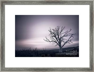 The Awakening Framed Print by Evelina Kremsdorf
