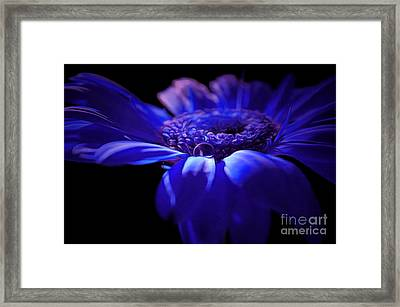 The Awakening Framed Print by Krissy Katsimbras