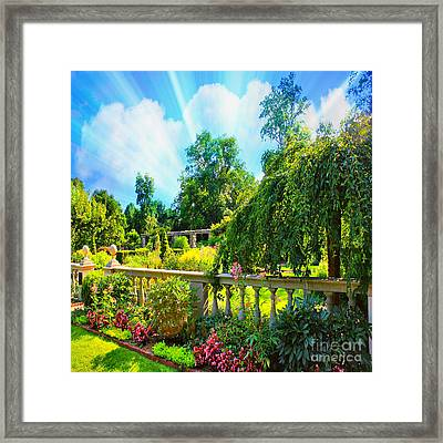 The Beauty Of Nature Framed Print by Judy Palkimas