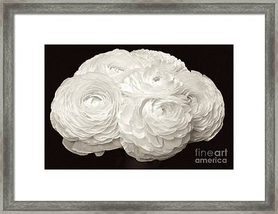 The Brides Bouquet Framed Print by Jeannie Rhode