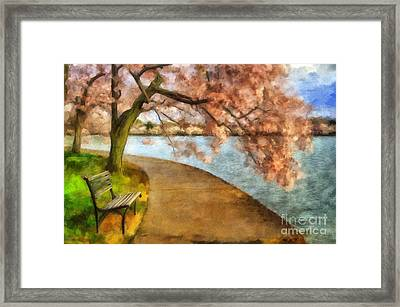 The Cherry Blossom Festival Framed Print