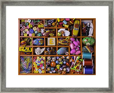 The Collection Framed Print by Garry Gay