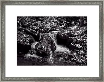 The Creek In Black And White Framed Print
